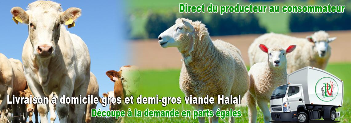 PEVIA livraison à domicile de viande halal gros et demi-gros