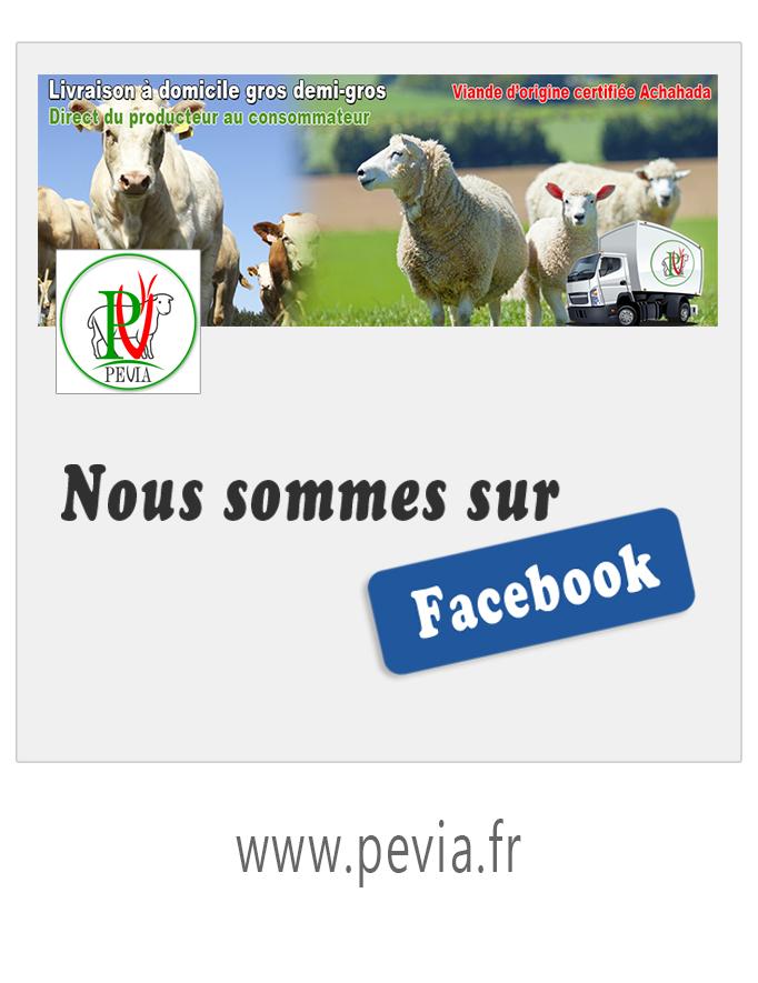 Page Facebook PEVIA SARL 45170 Aschères-le-Marché (Loiret)